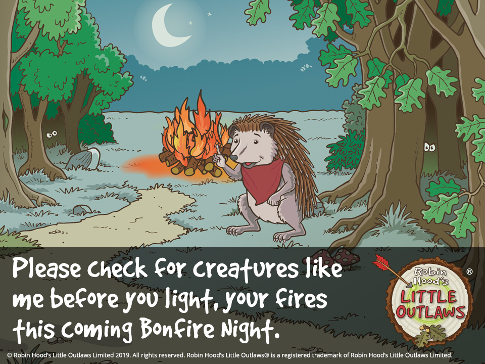 Scarlet the hedgehod warning of Bonfire Night 2019 danger to animals